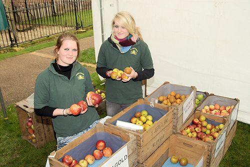 Ely apple festival