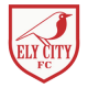 Ely City Football Club