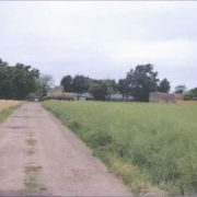 Haddenham CLT Housing